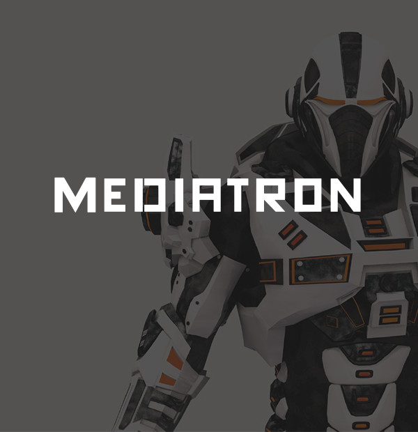 MEDIATRON: WEB SERVICE FOR ADVERTISERS