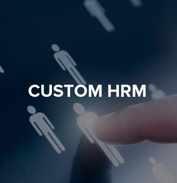 HRM SYSTEM DEVELOPMENT