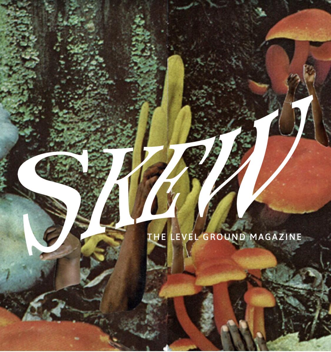 skew magazine