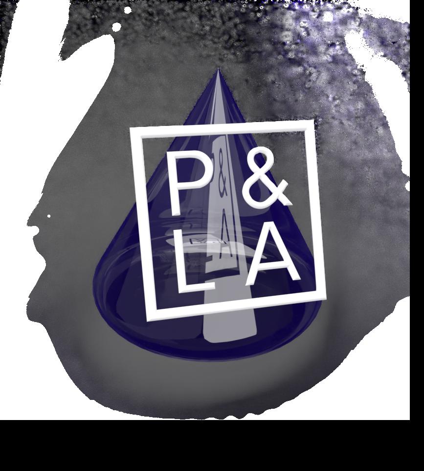 Pen and Lens Academy 3D logo