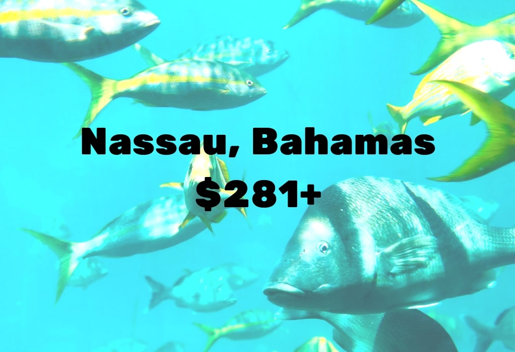 Image of deal to Bahamas for $281