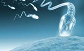khasiat titan gel medan