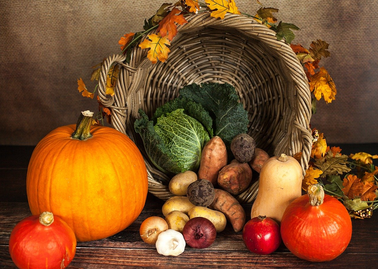 Why We're Thankful For Good Software