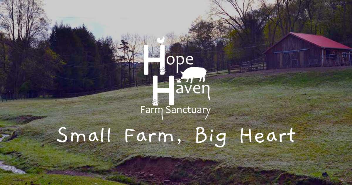 Hope Haven Farm Sanctuary   Pittsburgh, Pennsylvania