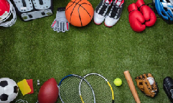 Les clubs multisports