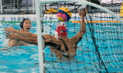 Les clubs de waterpolo