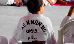 Les clubs de taekwondo