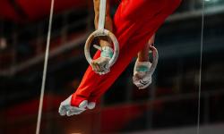 Les clubs de gymnastique