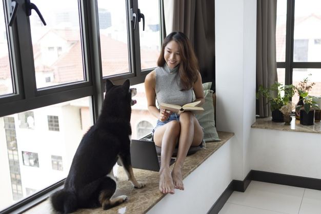 Create a Cozy Reading Corner