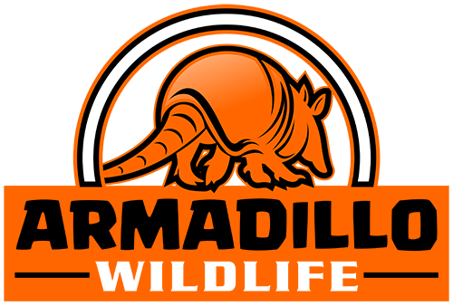 Armadillo Wildlife logo