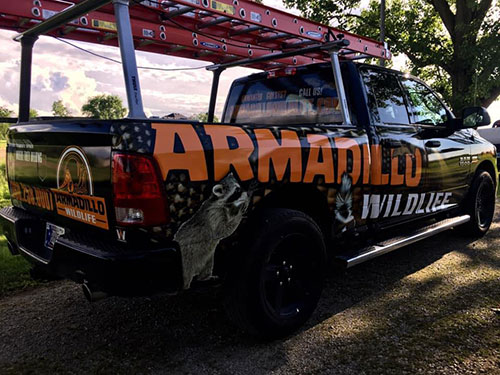 Armadillo Wildlife truck