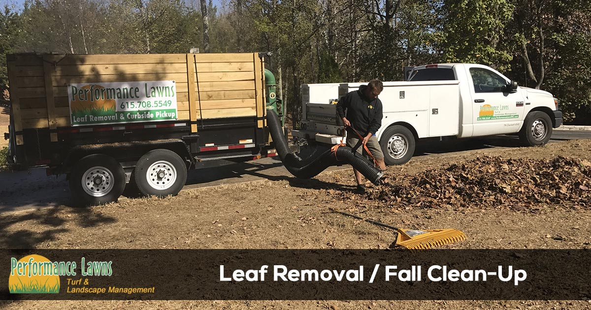 Leaf Removal Service in TN