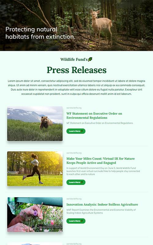 Preview of a non-profit press coverage template