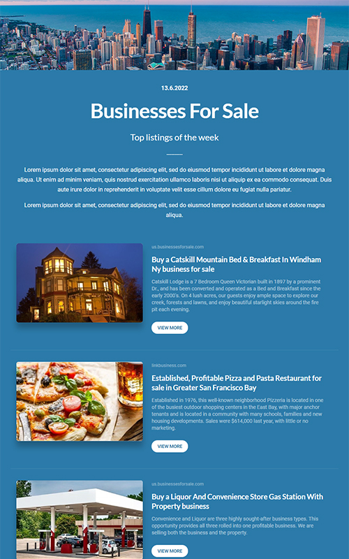Preview of a businesses for sale template