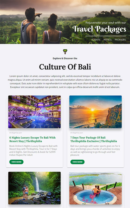 Preview of a travel packages for sale template