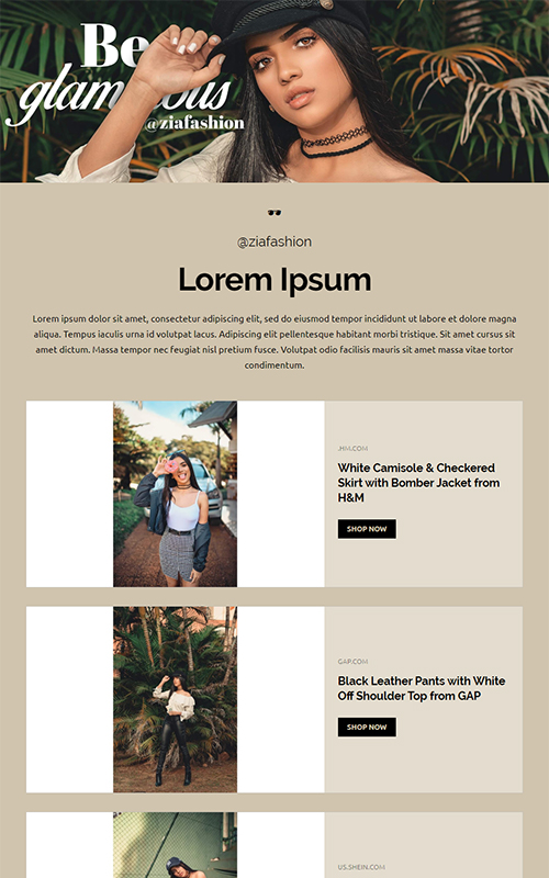 Fashion influencer template