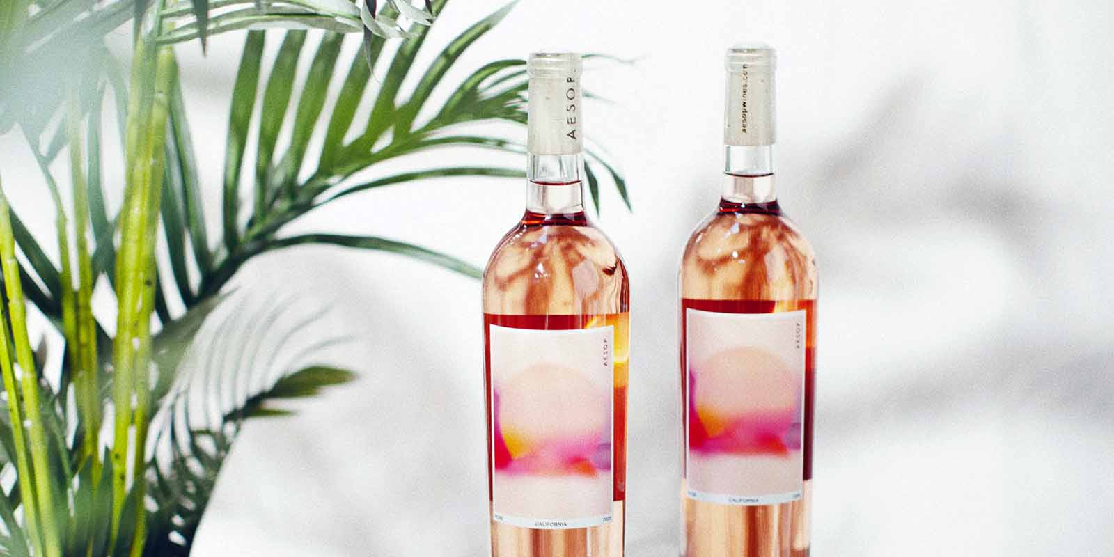 Two wine bottles in front of a palm plant