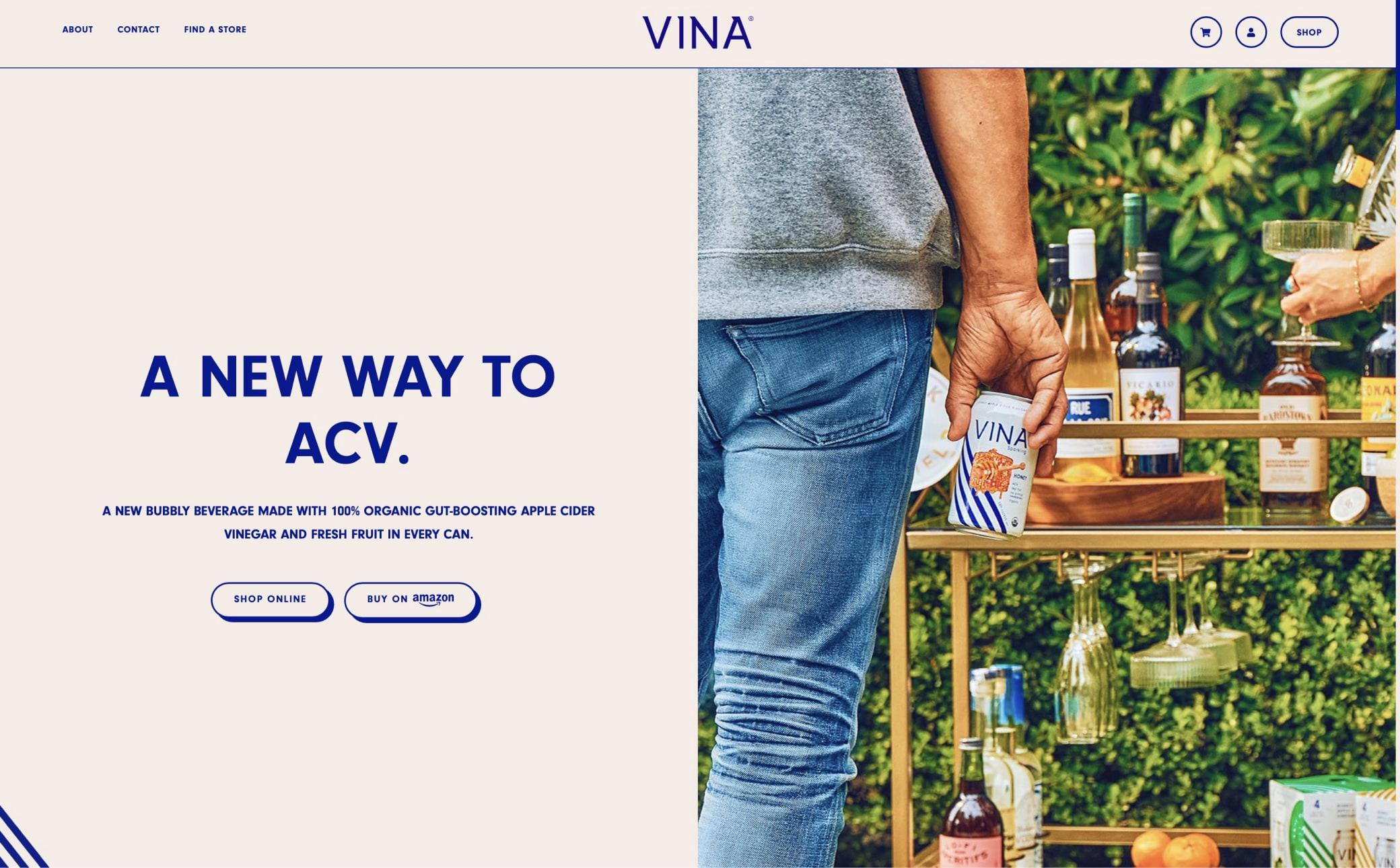 VINA Screenshot Main