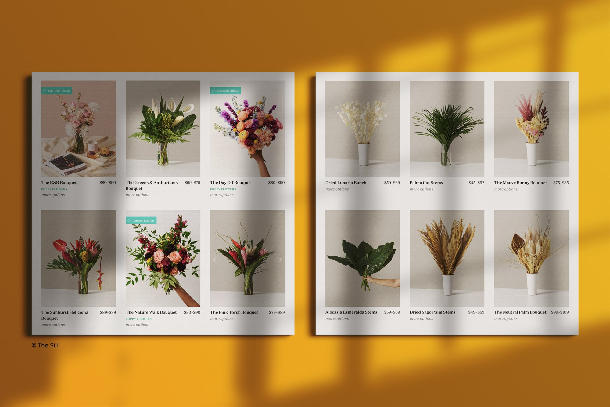 Product images from The Sill showing consistency across photos