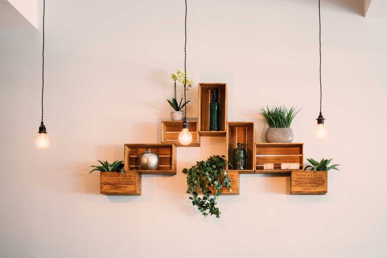 Wooden floating shelves with plants to ai