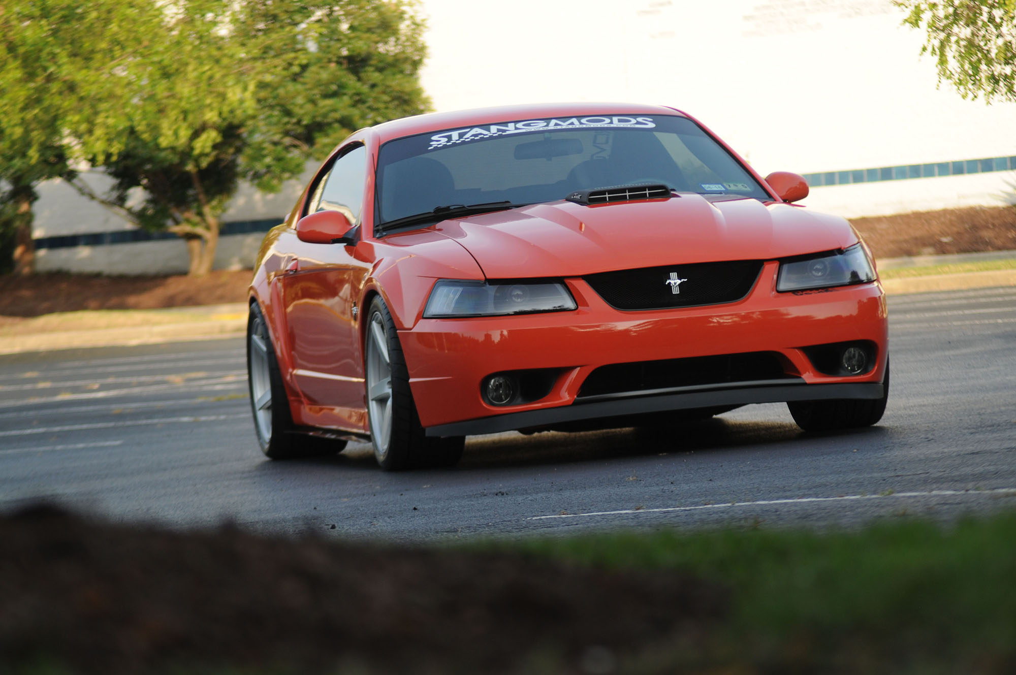 2004 Mustang Mach 1 Front