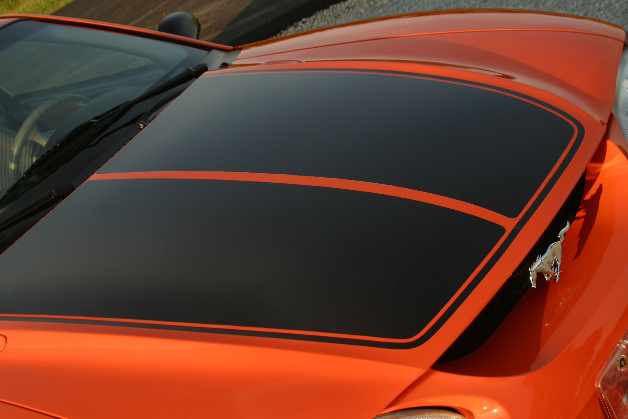 Mustang  hoodwith stripe