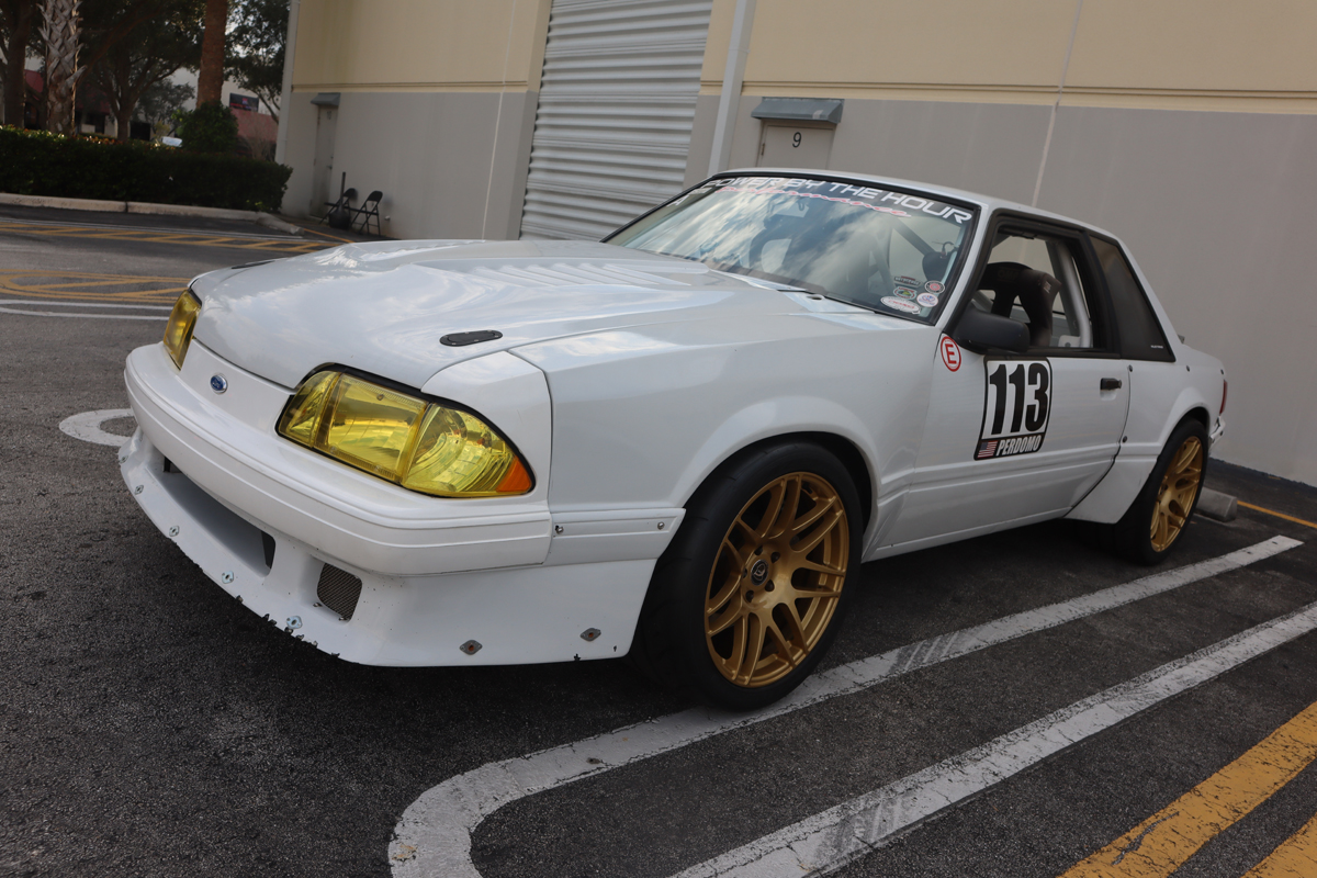 Fox Mustang
