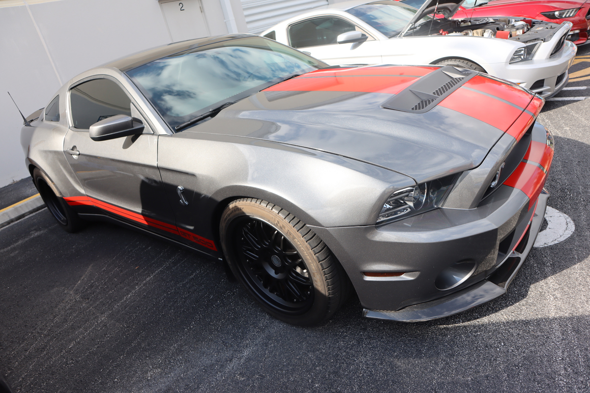 Andy Speranza's Shelby GT500