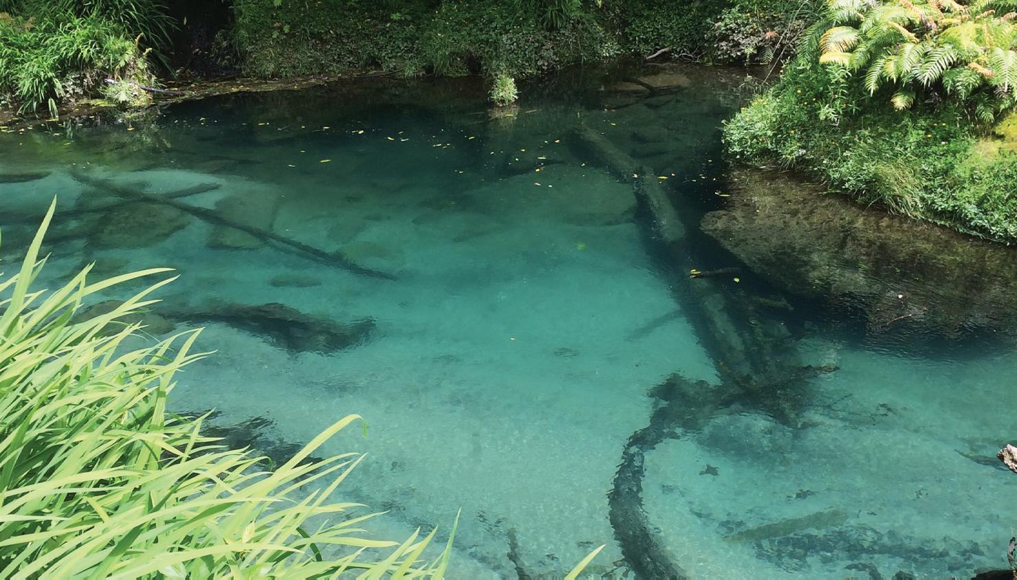 Waiāri Water Supply Scheme