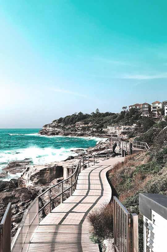 Coastal Walk Bondi To Coogee