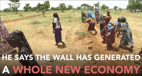 Why is Africa building a Great Green Wall?