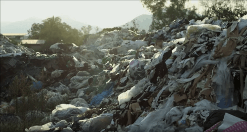 Tracking your plastic: Exposing recycling myths