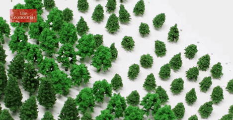 Climate change: the trouble with trees