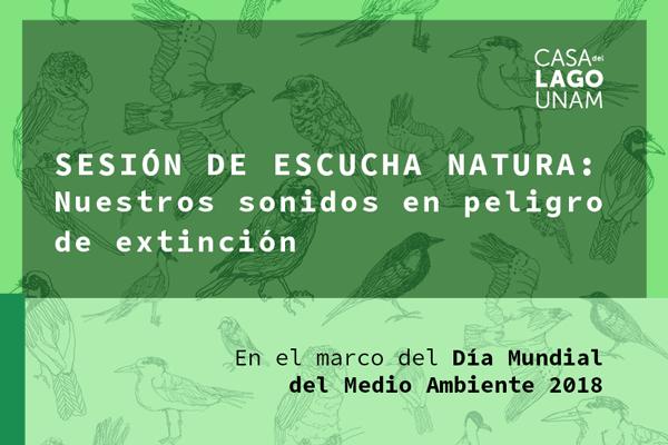 Sesión de escucha: Natura, nuestros sonidos en peligro de extinción