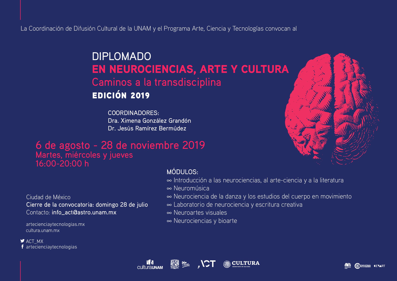 Caminos a la transdisciplina: diplomado en neurociencias, arte y cultura