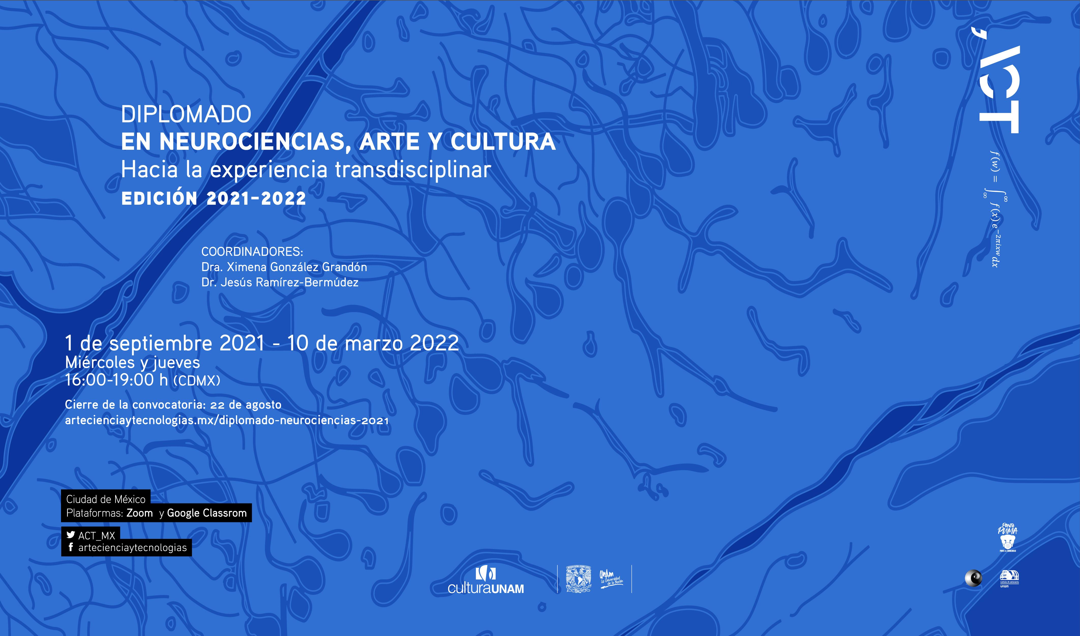 Diplomado en neurociencias, arte y cultura: Hacia la experiencia transdisciplinar