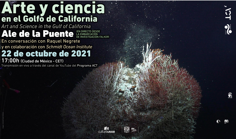 Arte y ciencia en el Golfo de California, con Ale de la Puente