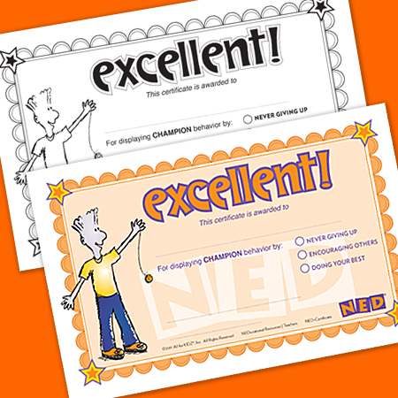 NED Certificate Printable