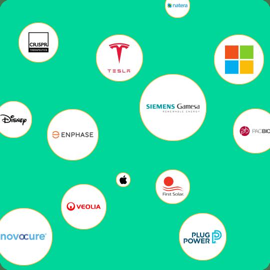 Logos of 100 top companies