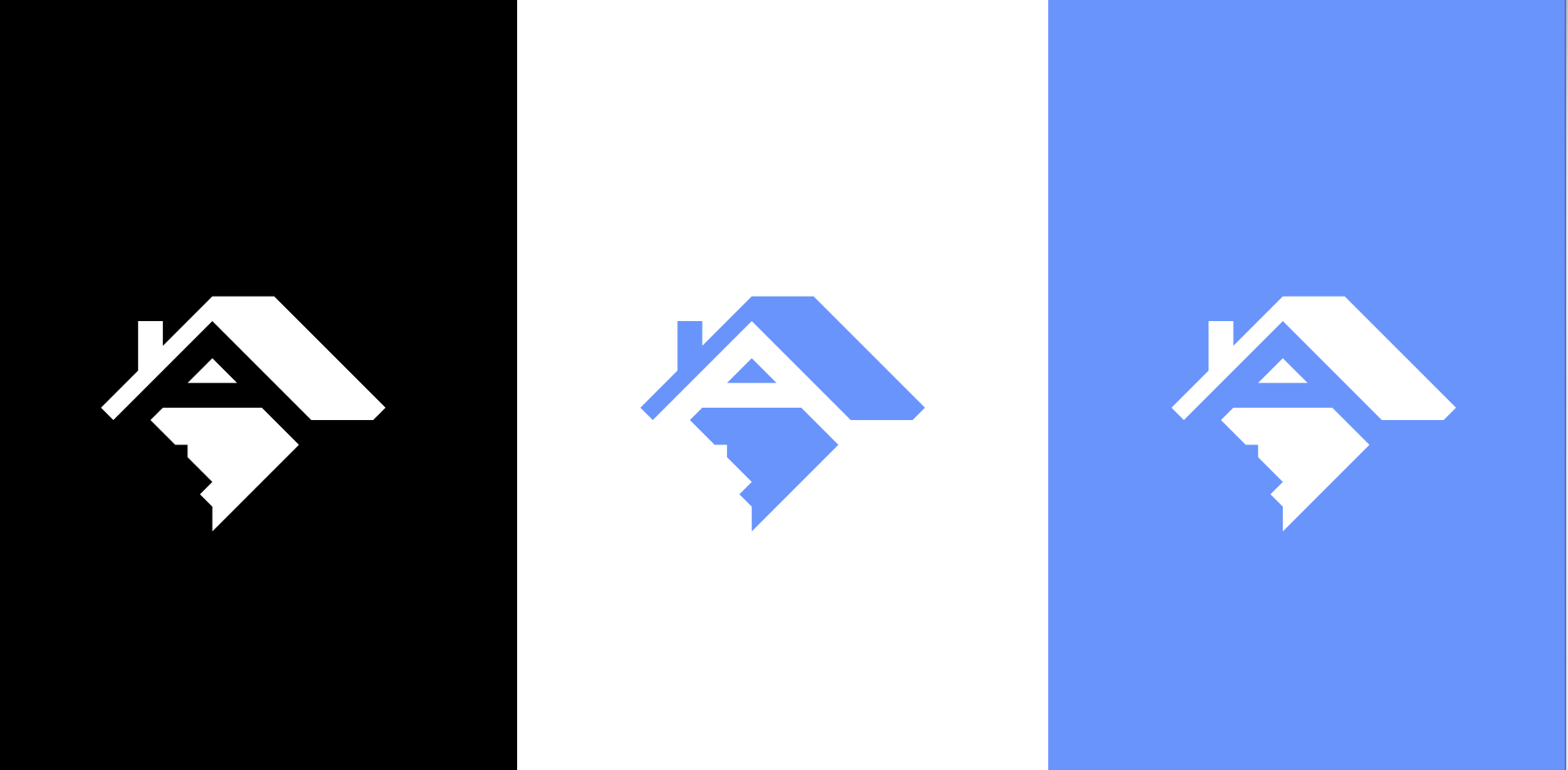 Austin Auger's logo in black, white, and blue. It's a hidden image of a rooftop and the DC borders