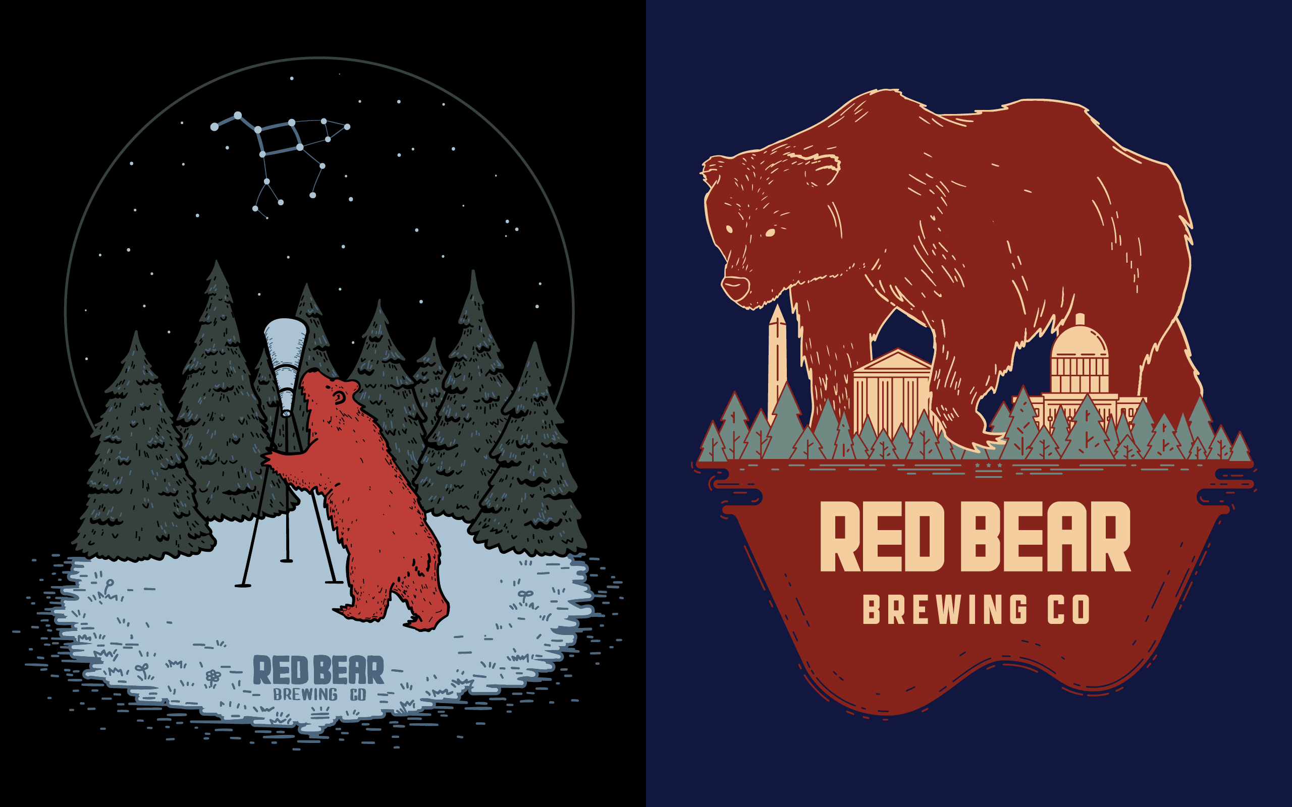 An illustration of a bear looking up at the night sky through a telescope, alongside another illustration of a larger-than-life bear walking between DC monuments and the capitol building