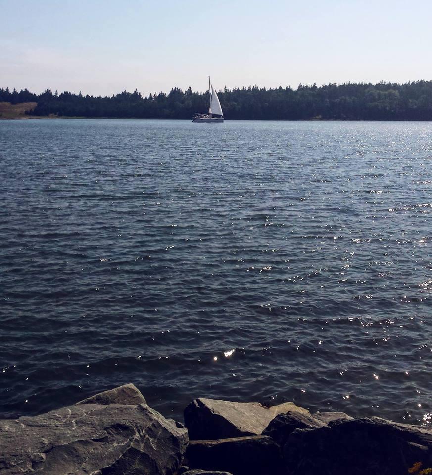 view overlooking water