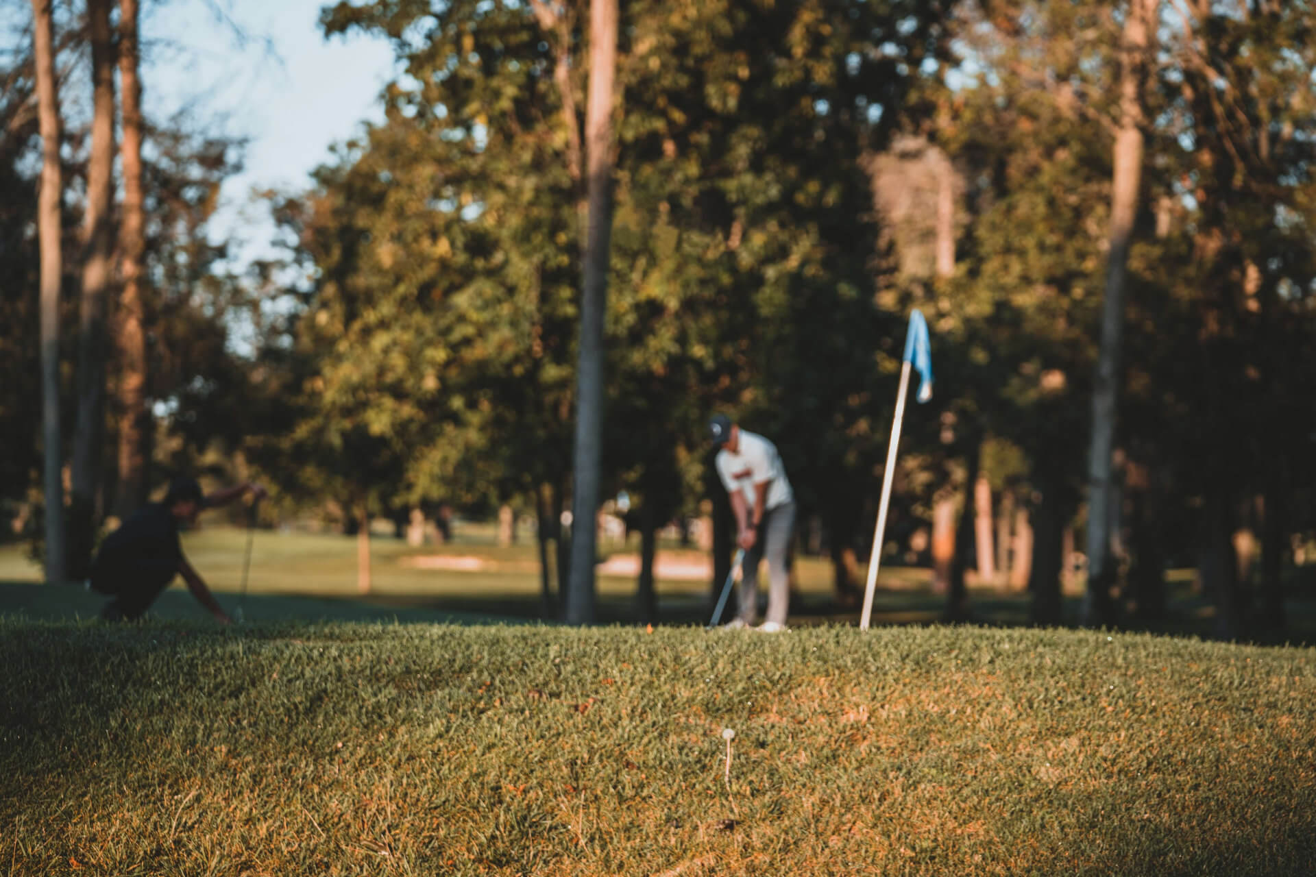 Golf is Seeing a Surge in Popularity and Profits During the Pandemic