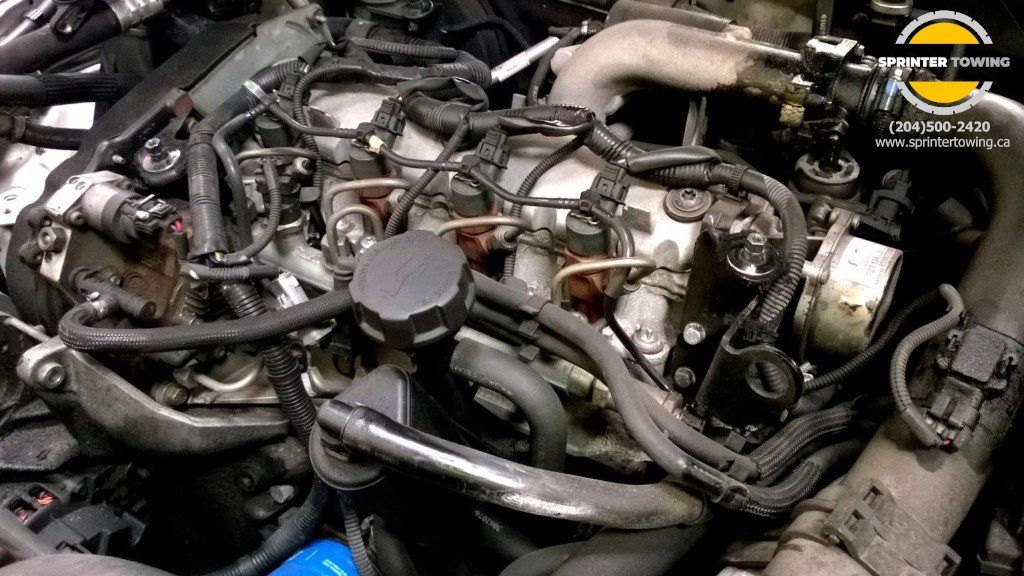 Spring Car Maintenance: Check Under the Hood