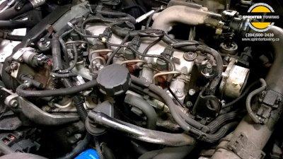 Spring Car Maintenance: Check Under the Hood
