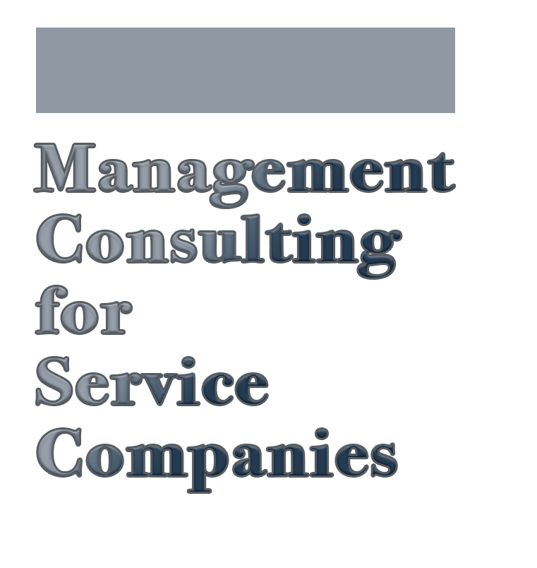 Lambert Strategy Group Limited - Management Consulting for Service Companies