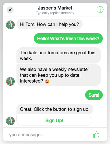 Conversation in the Customer Chat Plugin