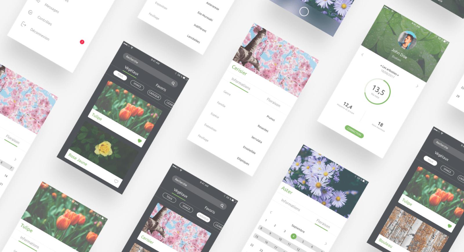Vegyscan app - App design