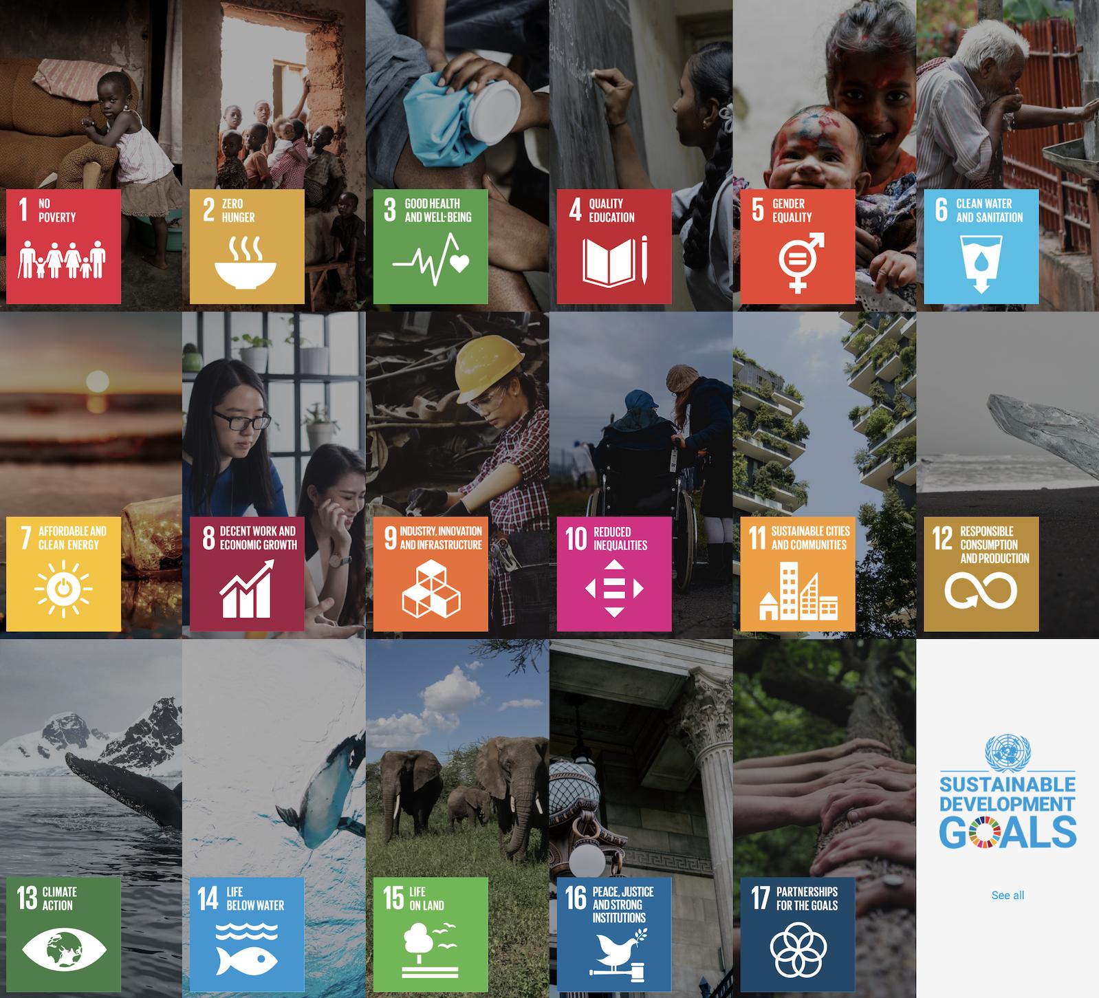 The UN's sustainable development goals.