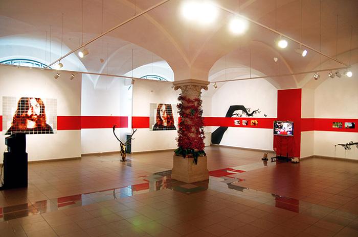 Brukenthal Museum — Museum for Contemporary Art
